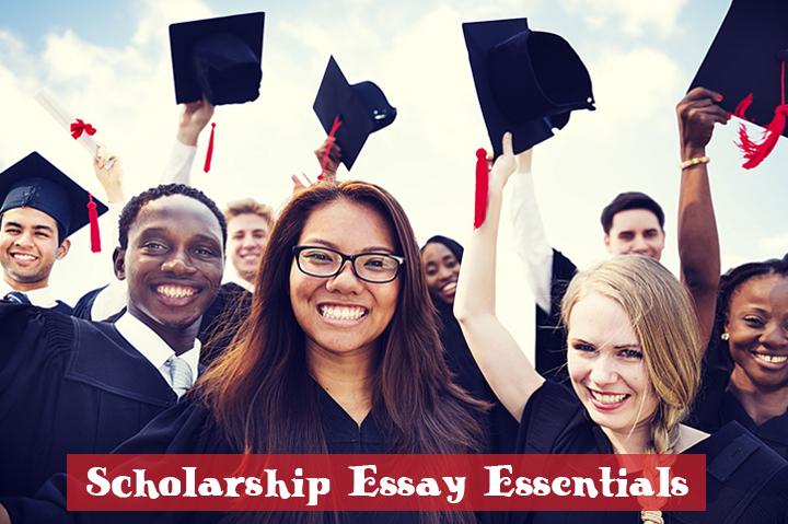 contoh essay ccip