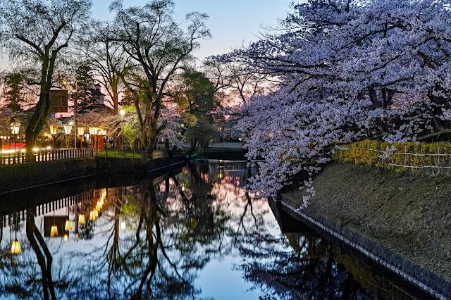 #photo #landscape #sigma #foveon #sdquattroh #japan #yamagata #tsuruoka #山形県 #鶴岡市 #山形帝國 #写真 #風景写真 #桜
