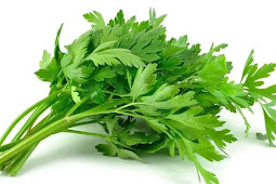 Benefits of Celery Leaves For Body Health