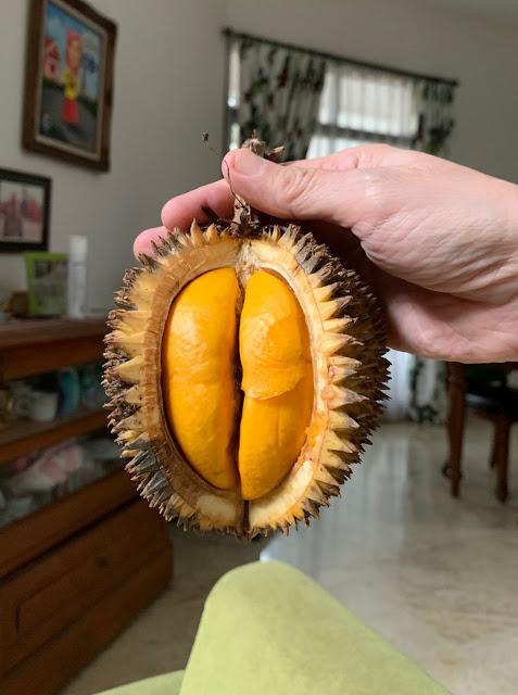 buah lai yang serupa tapi tak sama dengan durian