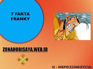 7 Fakta Franky One Piece, Pembuat Kapal Thousand Sunny Go