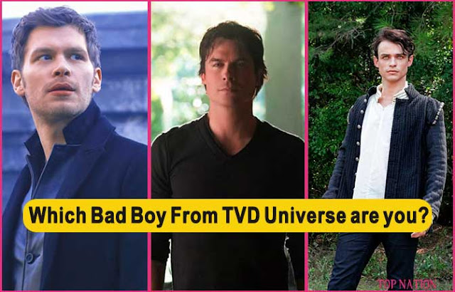The Vampire Diaries Universe: Which Bad Boy are you?