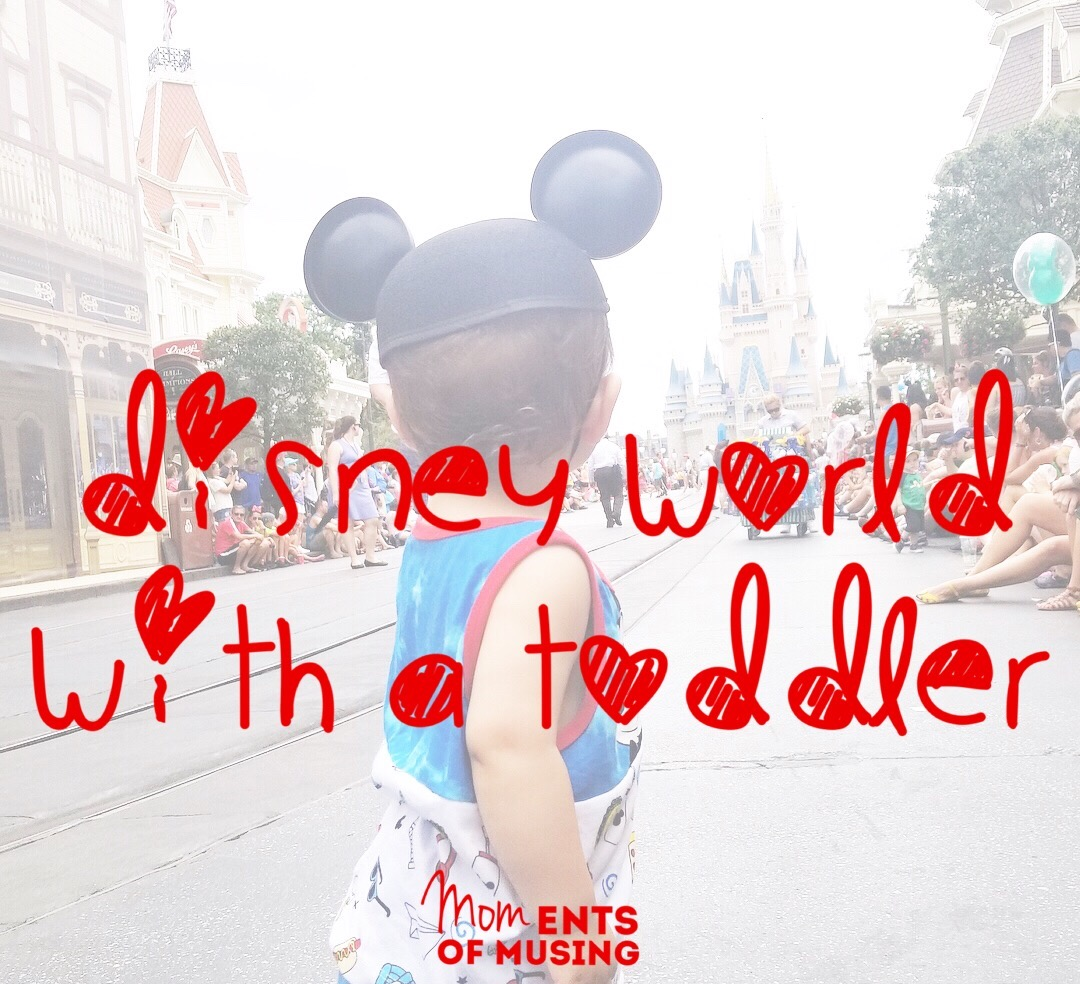 Disney World with a Toddler - Moments of Musing