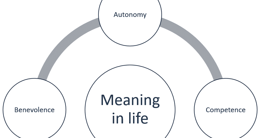 The Progress-Focused Approach: Where does meaning in life