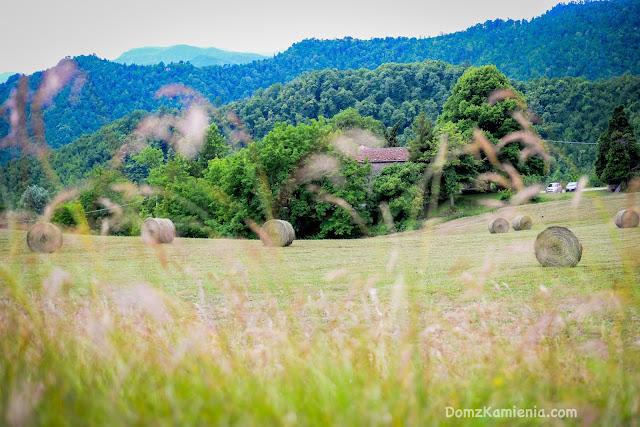 Gamberaldi - Marradi blog Dom z Kamienia