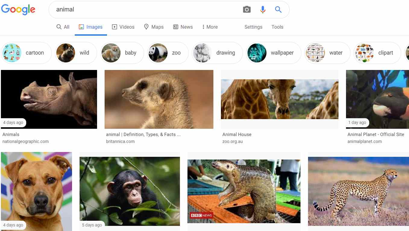 Google Image is a Google service. You can find any image you like in Google Images. In fact, you will not find any image that is not in Google Image.