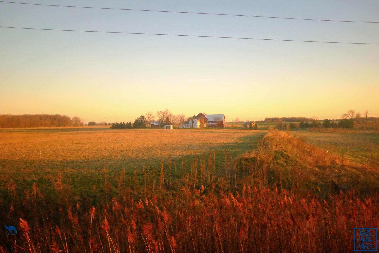 Le Chameau Bleu - Vue d'une ferme depuis le train pour Chicago