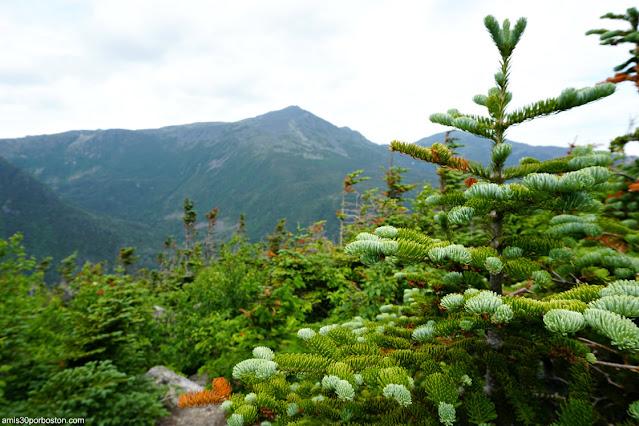 Mount Washington en la Cima de Nueva Inglaterra