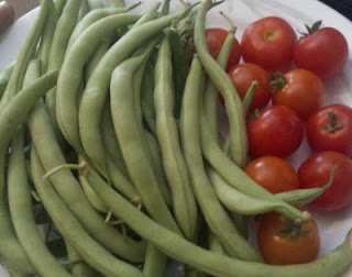 garden fresh produce, fresh green beans, fresh tomatoes, cherry tomatoes