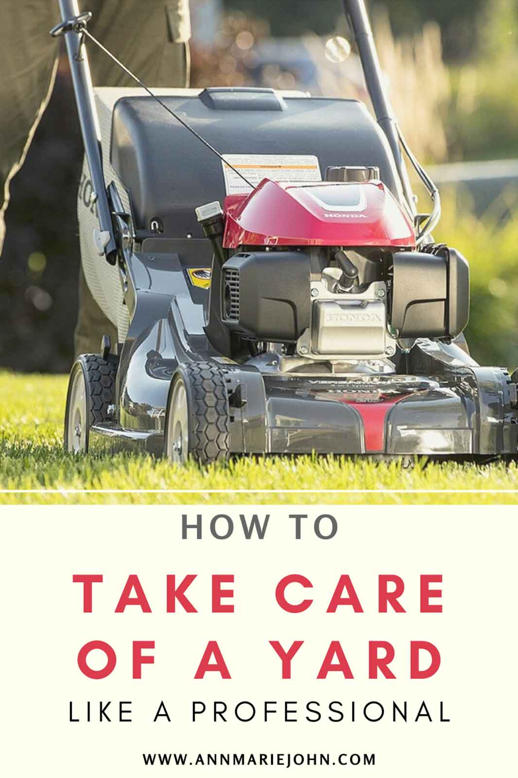 How to take care of a yard like a professional