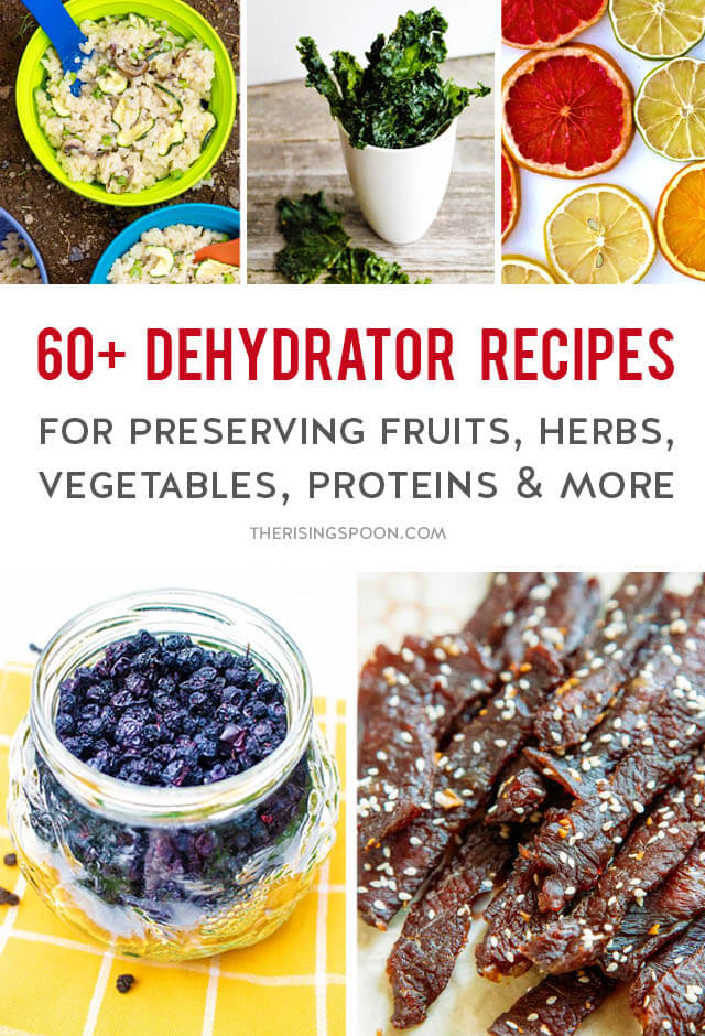 60+ Dehydrator Recipes For Preserving Food, Saving Money & Eating Healthier