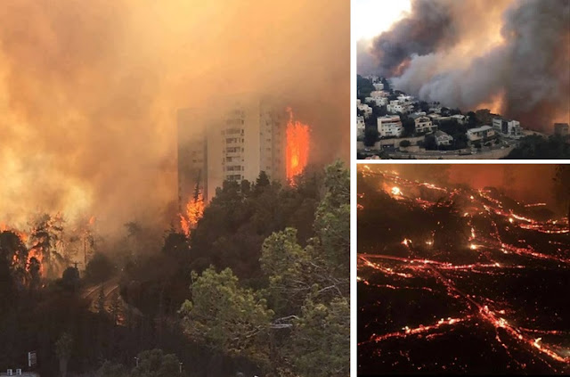 Kebakaran di Haifa Israel