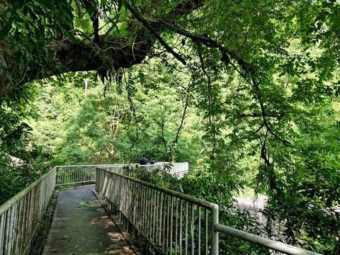 น้ำตกชั้นบนสุด มีสะพานเหล็กทอดข้ามลำธารน้ำตกสำหรับชมวิวน้ำตกนางรองหรือถ่ายรูปเก็บรรยากาศสวยๆ