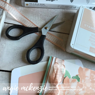 Ink & Inspiration Blog Hop - June 2019 - Focus on Tools | SUPPLIES by Stampin' Up!® | Nature's INKspirations by Angie McKenzie
