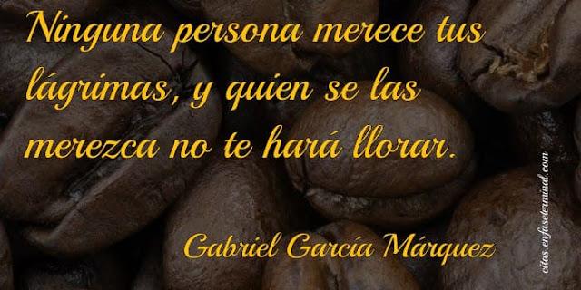 Ninguna persona merece tus lágrimas, y quien se las merezca no te hará llorar.    Gabriel García Márquez