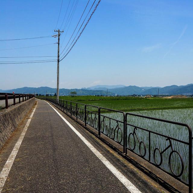あづみ野やまびこ自転車道 拾ヶ堰 水田