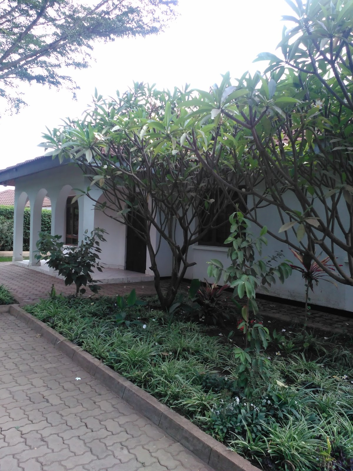 Rent House In Tanzania Arusha Rent Houses Houses For Sale Real Estates Trends Houses For Rent