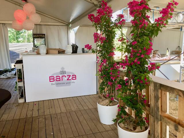 planten huren voor event feest party
