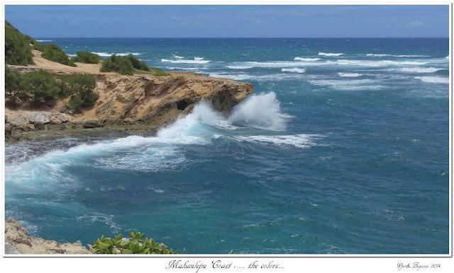 Mahaulepu Coast: ... the colors...