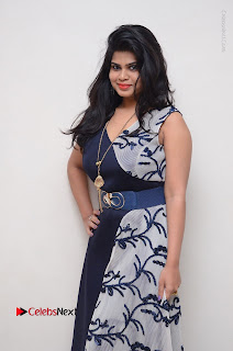 Telugu Actress Alekhya Stills in Blue Long Dress at Plus One ( 1) Audio Launch  0027.jpg