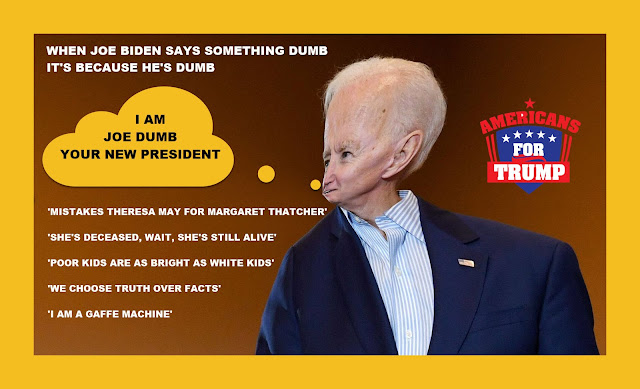 Memes: WHEN JOE BIDEN SAYS SOMETHING DUMB IT'S BECAUSE HE'S DUMB
