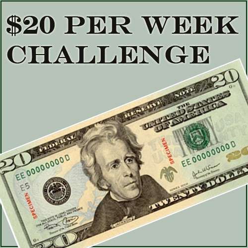 Could you survive on $20 per week.. this budgeting challenge asks just that.