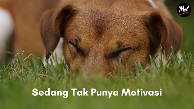 Sedang Tak Punya Motivasi