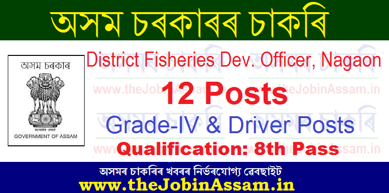 DFDO Nagaon Recruitment 2021: Apply for 12 Driver, Grade-IVand allied Cadre Posts