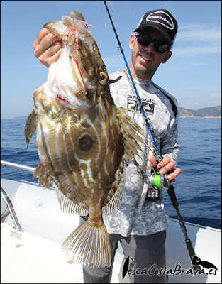 gallo graphiteleader protone daiwa pirates pesca costa brava jjpescasport 2 - JORANDAS DE JIGGING Y SPINNING