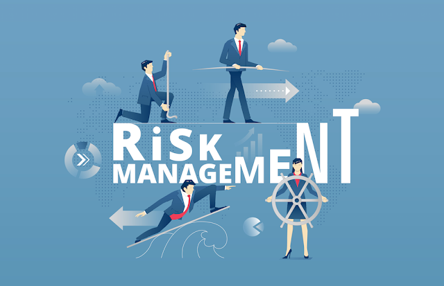 The guiding principles of Risk Management