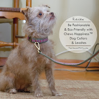 Review: Be Fashionable & Eco-Friendly with Chews Happiness™ Dog Collars & Leashes
