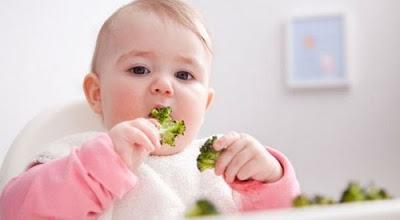 12 Resep Makanan Anak 1 Tahun Dan Cemilan Praktis Sehat Dan Bergizi