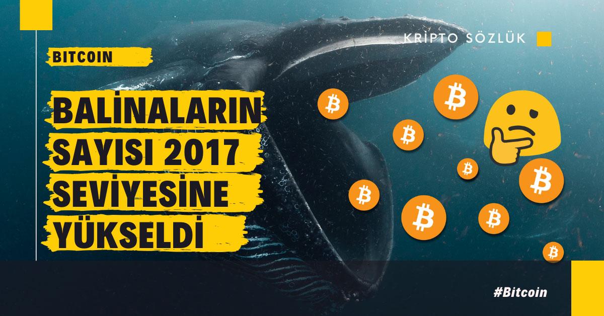 Bitcoin Balinalarının Sayısı 2017 Seviyesine Yükseldi