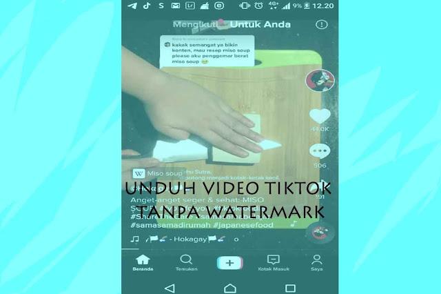 Aplikasi Buat Unduh Video Tiktok Tanpa Watermark