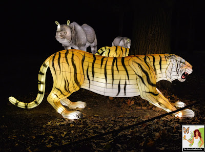 Illuminated Tiger and Rhino Bronx Zoo Holiday of Lights 2019, Tiger, Rhinocerus