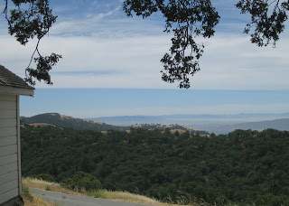 Distant valleys of the Diablo Range from Pine Ridge, Henry Coe State Park, Morgan Hill, CA