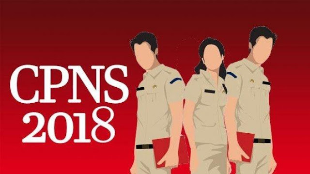 Update NIP CPNS 2018