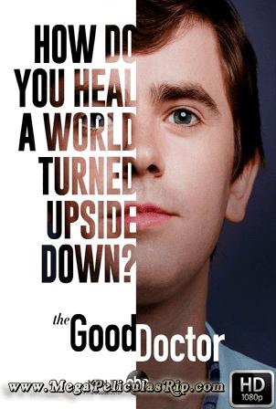 The Good Doctor Temporada 4 [1080p] [Latino-Ingles] [MEGA]