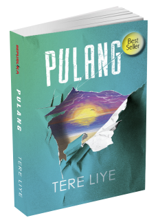 Cover Novel Pulang karya Tere Liye