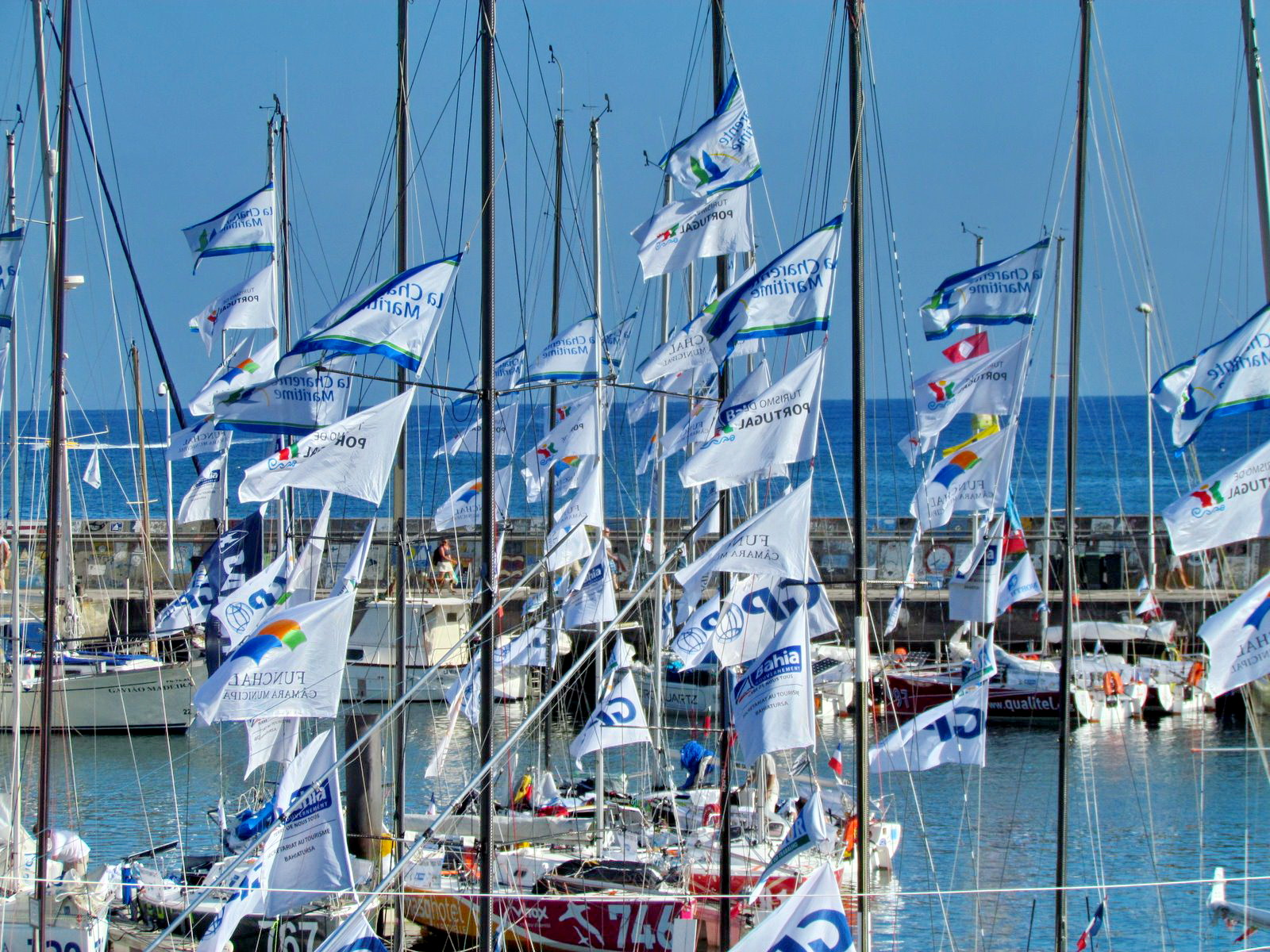 flags in Funchal marina