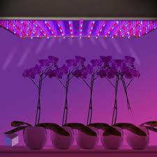 Iluminación LED en cultivos de interior