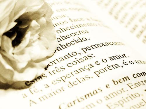 Palavras Força Jovem: Fé, Esperança E Amor