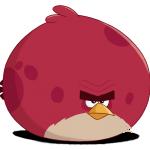 الطائر تيرانس لعبة الطيور الغاضبة