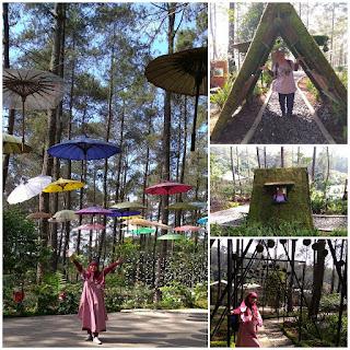 Tempat Wisata Orchid Forest Cikole Bandung