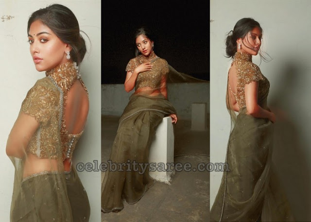 Anu Emmanuel in Transparent Saree