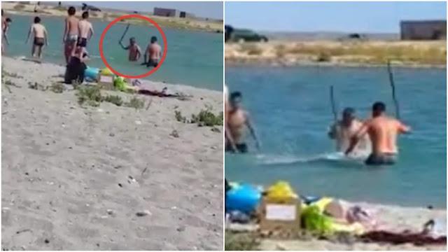 Толпа живодеров в Казахстане забила камнями и палками тюленя. Просто так! Видео!