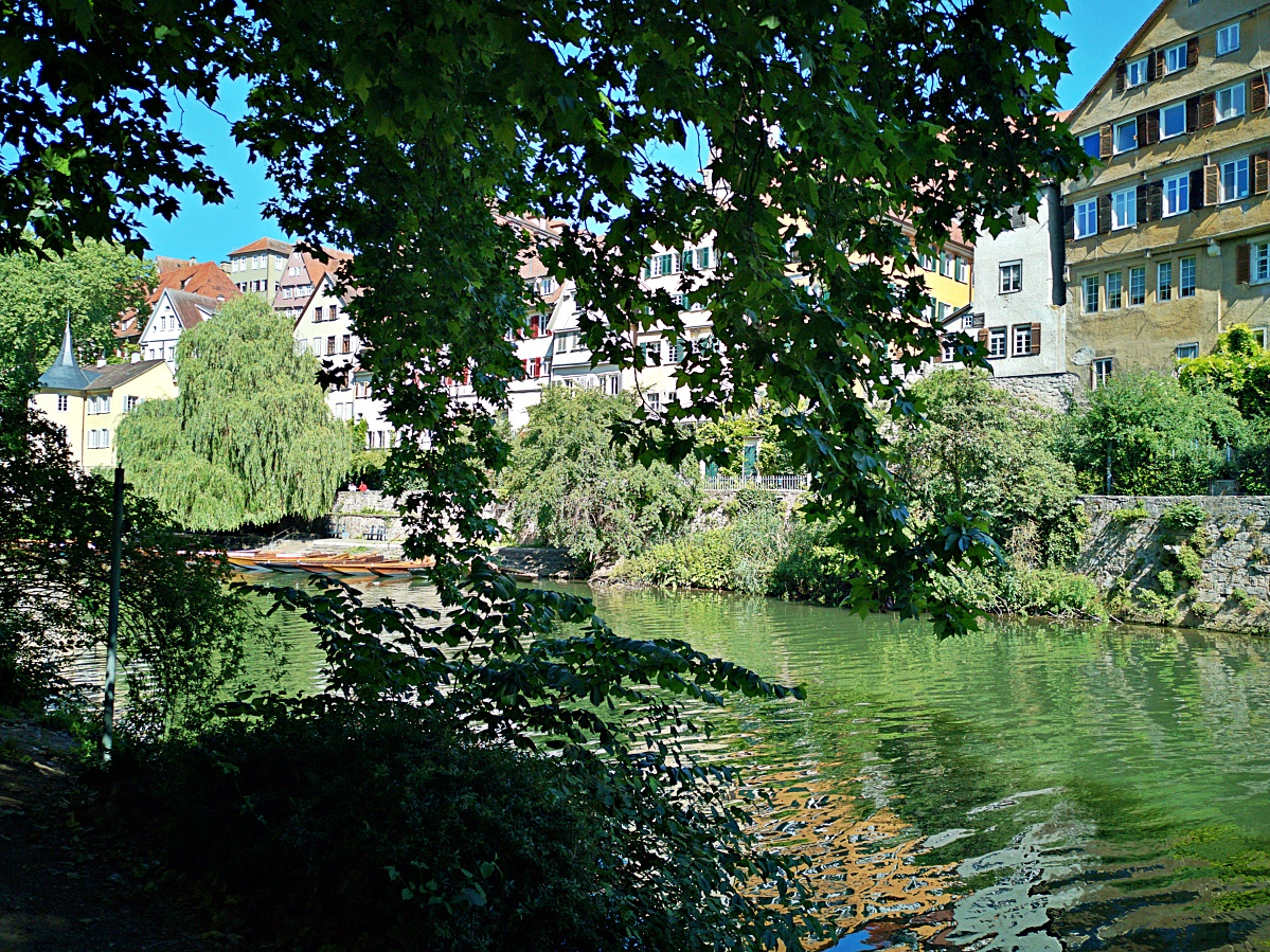 Bild der Woche #26 (KW26/2020) – Tübinger Neckarfront