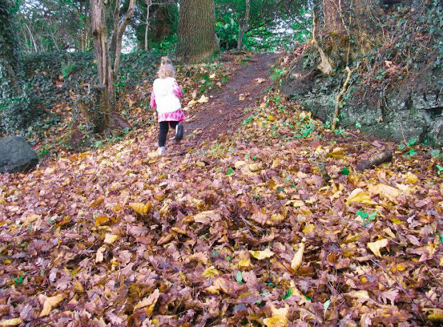 Winter Woodland Style with me&i- Review