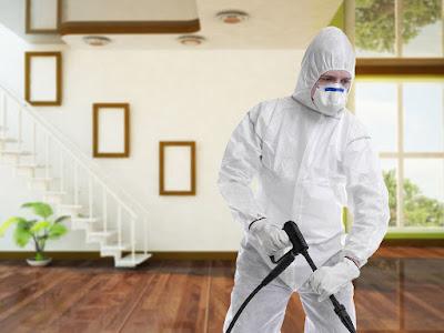 شركة رش مبيدات و مكافحة حشرات بالخرج مع الضمان