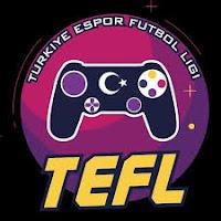 Fifa Türkiye Espor Futbol Ligi